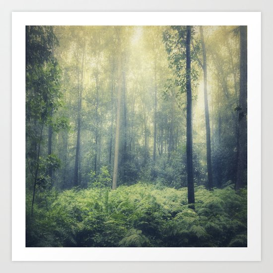 serene woodlands Art Print
