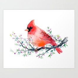 Watercolor red cardinal on berry branch Art Print