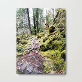 Rocky Trail Metal Print