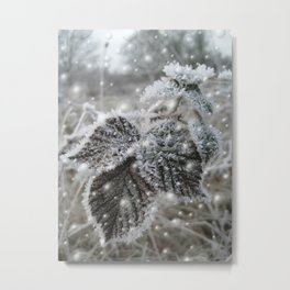 Ice cold beauty Metal Print