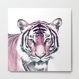 Animal ArtStudio 916D Tiger Metal Print