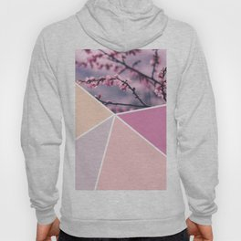 Soft Pastel Cherry Blossom Hoody
