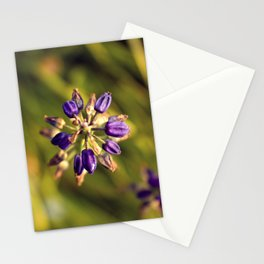 A Simple Balance Stationery Cards