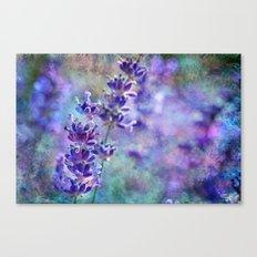 Lavender Grunge Canvas Print