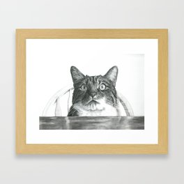 My Hungry Cat Framed Art Print