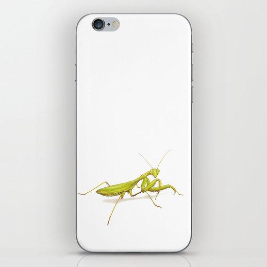 Praying Mantis by Lars Furtwaengler | Colored Pencil / Pastel Pencil | 2014 iPhone & iPod Skin