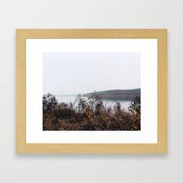 Peafowl Island Framed Art Print