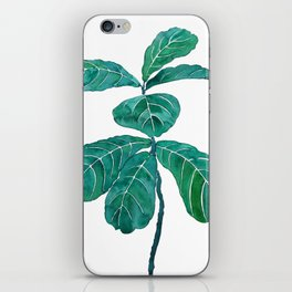 fiddle leaf fig watercolor iPhone Skin