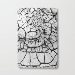 Terra Metal Print