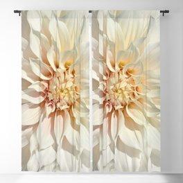 Dahlia white macro 043 Blackout Curtain