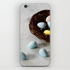 Robin's Eggs and Nest iPhone & iPod Skin