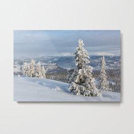 Winter in Norway Metal Print