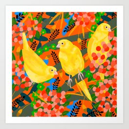 Canaries on Red Art Print