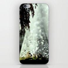 Dreamer on the Slippery Slope iPhone & iPod Skin
