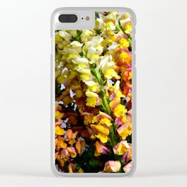 Snap Dragon Flowers / Milan -Italy Clear iPhone Case