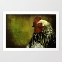 rooster Art Prints featuring Rooster by LudaNayvelt