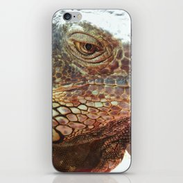 Grin from scale to scale iPhone Skin