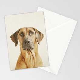 Hello my name is Hector Stationery Cards