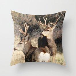Watercolor Deer Mule 17, The Disturbance Throw Pillow