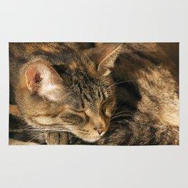 Sunny cat Rug
