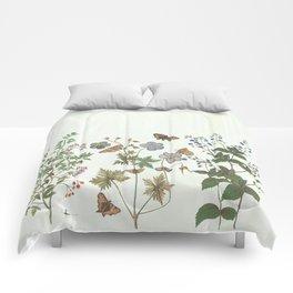 The fragility of living - botanical illustration Comforters