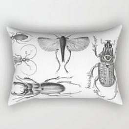 Vintage Beetle black and white drawing Rectangular Pillow