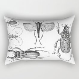 Vintage Beetle black and white drawing Rectangular Pillow