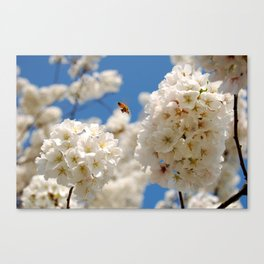 In Bloom 2 Canvas Print