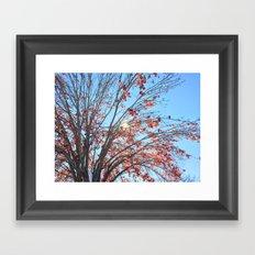 Red Leaves Framed Art Print