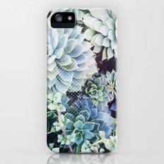 Succulents iPhone (5, 5s) Slim Case