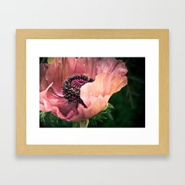 Flora II Framed Art Print