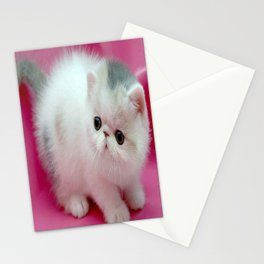 beyaz kedi Stationery Cards