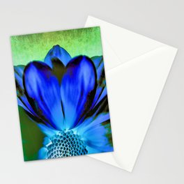Daisy Blue Stationery Cards