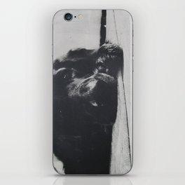 Luci iPhone Skin