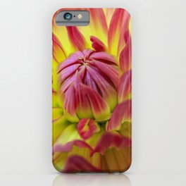 Magical Bloom iPhone Case