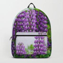 Lupinus Backpack