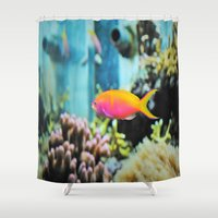 the life aquatic Shower Curtains featuring Life Aquatic by aes·thete