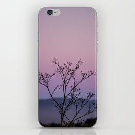 Faded Glory iPhone Skin