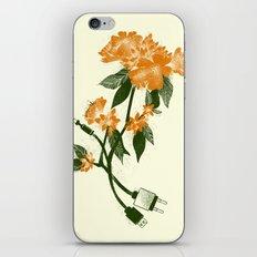 Digital Spring iPhone & iPod Skin