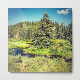 Mountain streams Metal Print