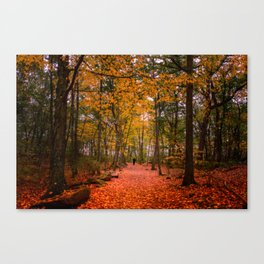October Forest Canvas Print