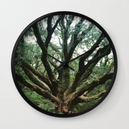 Age and Wisdom Wall Clock