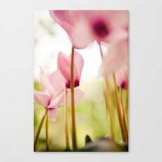 Cyclamen Forest Canvas Print