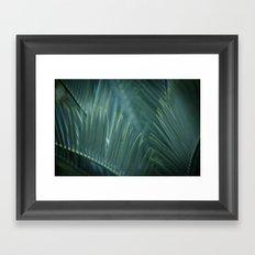 Tree Fern Framed Art Print
