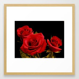 Red Roses in a cluster Framed Art Print