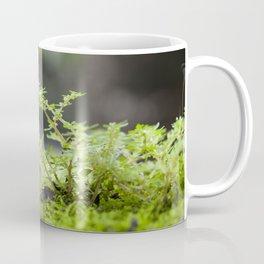 Rainforest Moss Coffee Mug