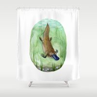 platypus Shower Curtains featuring Platypus by Kirsten Sevig