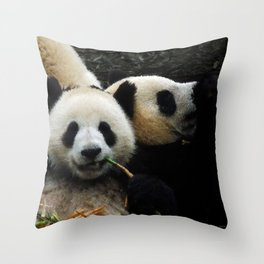 Friends are for Chillin' Throw Pillow