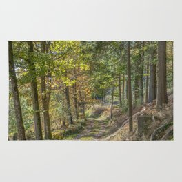 French forest road Rug