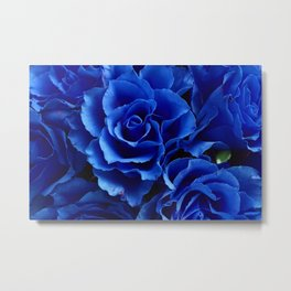 Blue Roses Flowers Plant Romance Metal Print